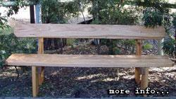 bench_thumb